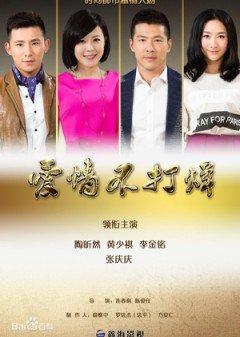 Gõ Cửa Tình Yêu - Never Ending Love (2015) Thuyết Minh HD