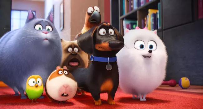 Phim đẳng cấp thú cưng phần 2